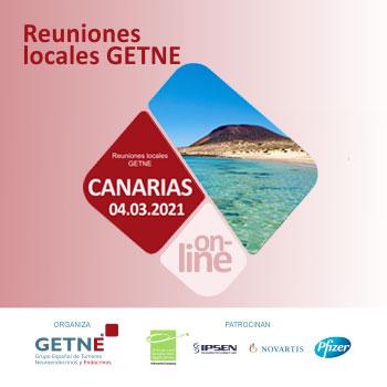 Reunión on-line Canarias